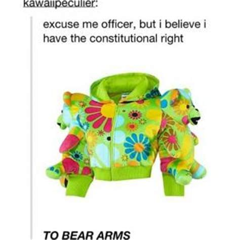Argumentative Essay On The Right To Bear Arms The Right To Bear Arms Argumentative Essay